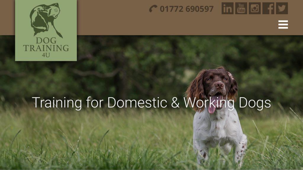 dog training and gundog training