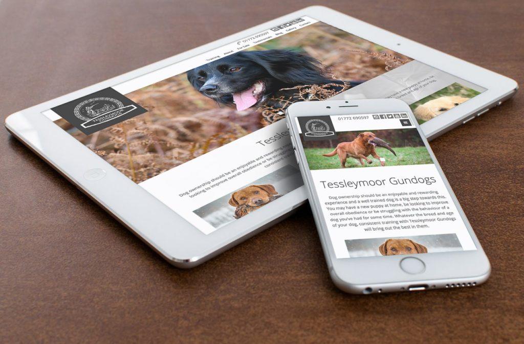 tessleymoor gundogs training new website
