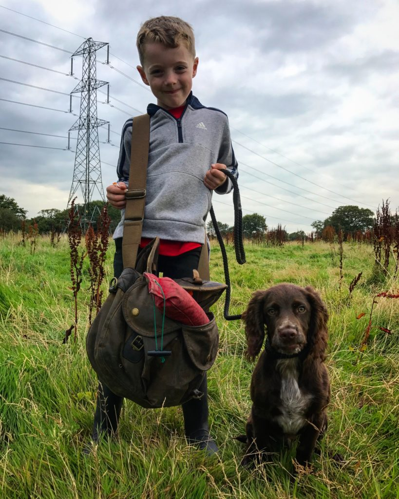 Gundog training a cocker Spaniel with a young handler